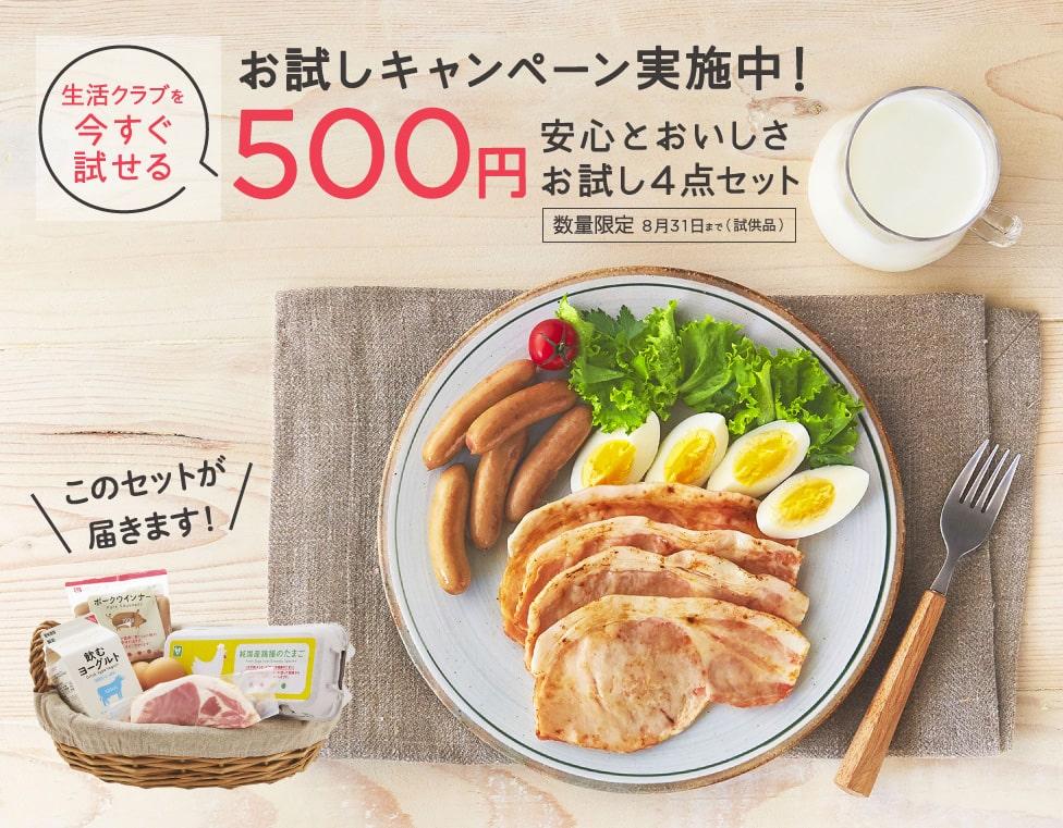安心とおいしさ500円お試し4点セット